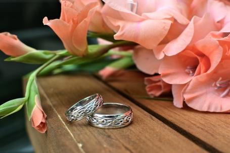 Shelton rings